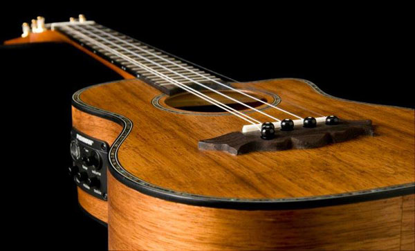Willie K Signature Ukulele